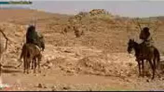 نمر بن عدوان يرد الحلال