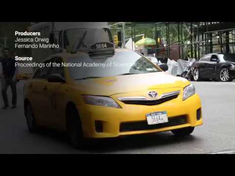 This Is The Reason Why Most Taxicabs Are Painted Yellow (Watch Video)