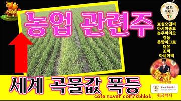 주식 투자] 농업 비료 관련주 세계 곡물가격 폭등