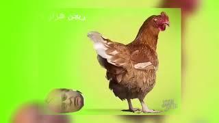 Best Funny Song on Nawaz Sharif