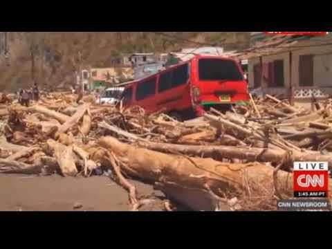 Pointe Michel Dominica worse hit by Maria.  Fallen trees everywhere, ancient rain forest gone