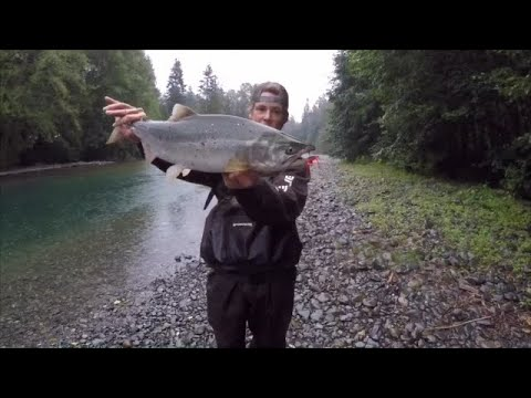 Washington State Pink Salmon Fishing 2019