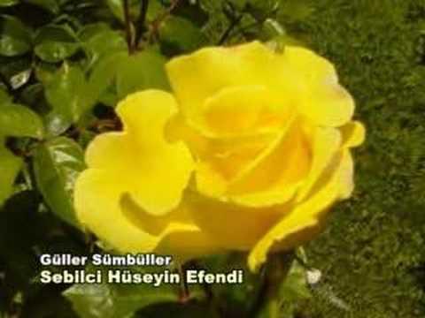Güller Sümbüller - Hüseyin Sebilci - zikrullah.com