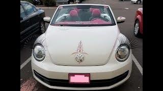 """""""Volkswagen Beetle""""  или """"ЖУК""""ов Вам в ленту!"""