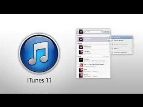 ¿ Como organizar la Biblioteca Musical en la nueva versión de iTunes 11.0.1 ?