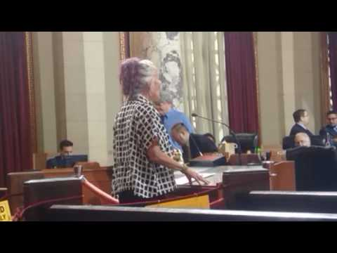 2016 11 08 Venice Beach BID Hearing at the Los Angeles City Council