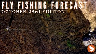 Trouts Fly Fishing Forecast | October 23rd Edition