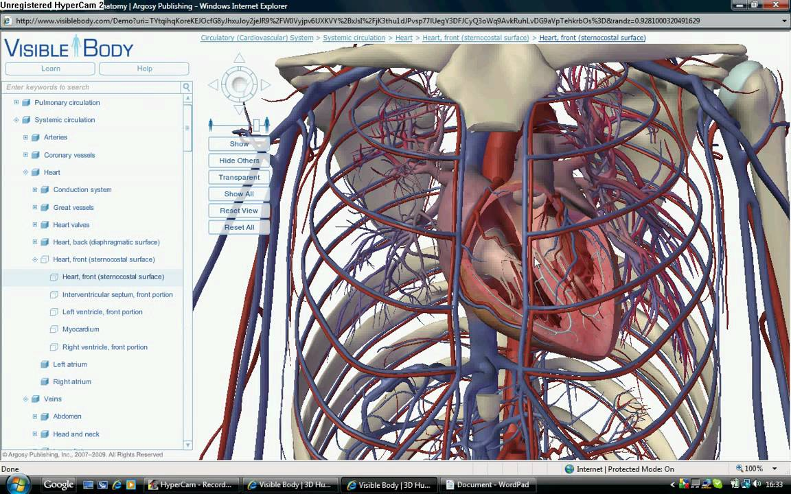 Visible Body Inside The The Heart And Brain Youtube