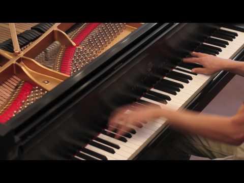 Restored Steinway model D | Chopin | PianoWorks