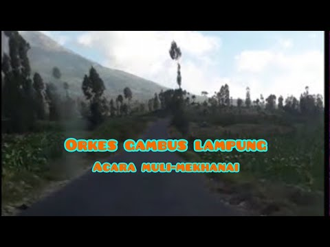 Lagu Lampung Gambus Bengkunat