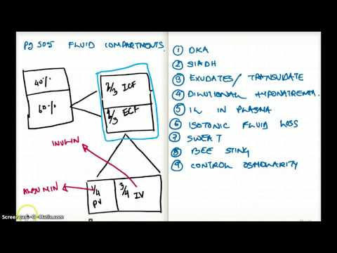 505 FA 12 : FLUID COMPARTMENTS WITH EXAMPLES PART 2 - YouTube