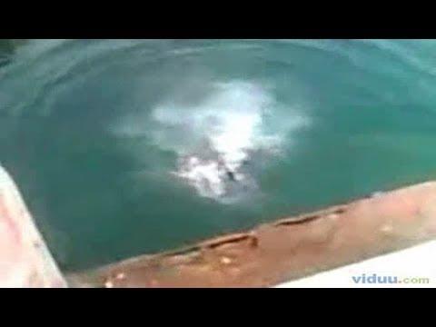 Cliff diving accident face split