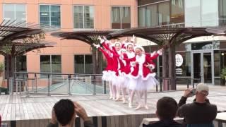 2016 Ballet Arts Austin Christmas recital