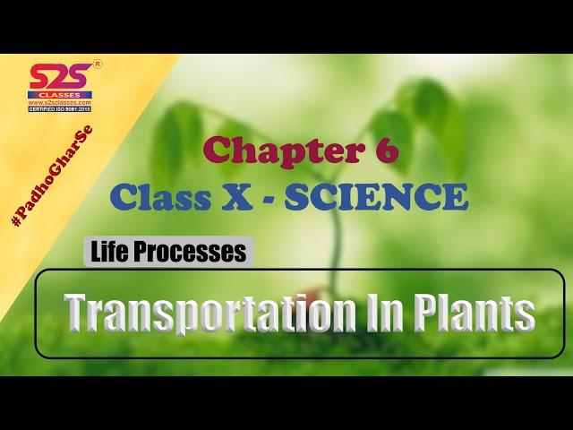 Class 10 Biology - Life Processes      NCERT KVS Chapter 6  Transportation In Plants   S2S Classes
