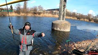 Весенний карась не давал скучать на фидерной рыбалке на реке!