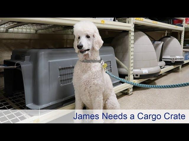 James Needs a Cargo Crate