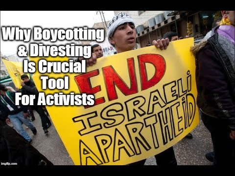 Why Boycotting & Divesting Is A Crucial Tool For Activists