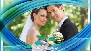 Скачать стиль proshow   свадьба Бесплатно Proshow Producer   Blu