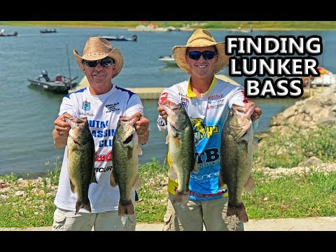 Bass Tournament! BEST Lake In Missouri! Mozingo Is On FIRE!