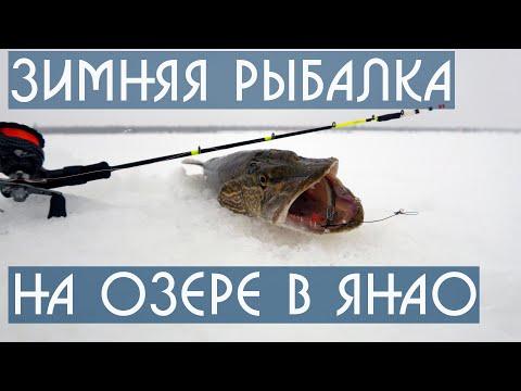 Зимняя рыбалка на озере в ЯНАО