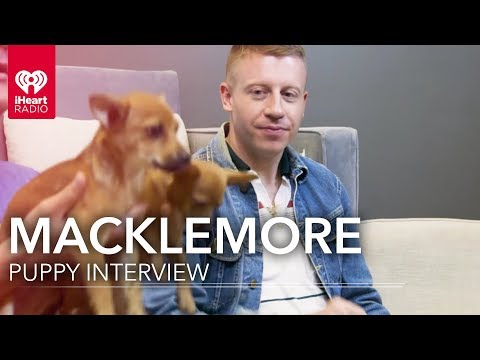Macklemore on Fake Family, Struggle, and Puppies! | iHeartRadio Music Festival