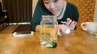 Repeat youtube video วิธีทำระเบิดลาวา Lava Lamp โดยครูแม่ขวัญ - Science for Kids