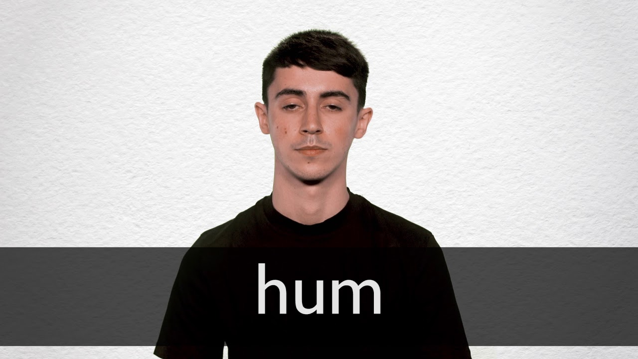 Hum definition and meaning | Collins English Dictionary