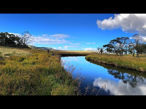 Trout Fishing New England NSW (Trip)
