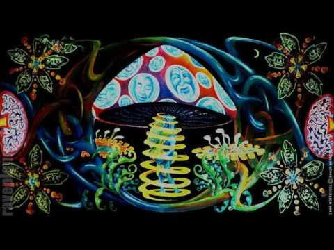 Psytrance Neill Moore Recorded at Tribe of Frog Spring Finale 2016