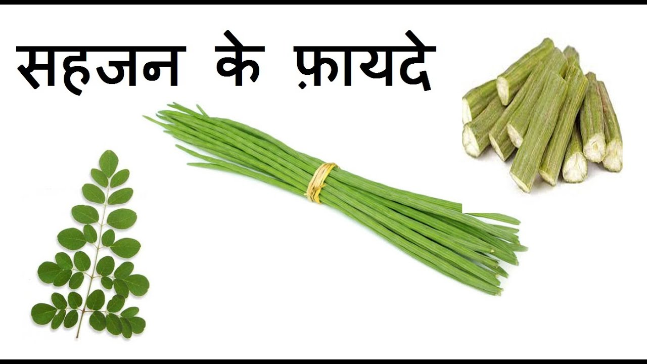 Medical and Healthy benefits of Drum stick Moringa oleifera