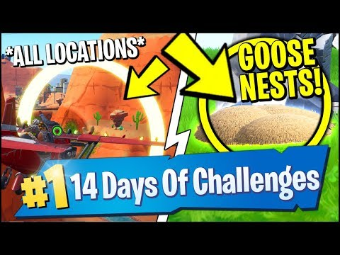 *ALL* Fortnite LOCATIONS | WATERSIDE GOOSE NESTS LOCATIONS & GOLDEN RINGS (14 Days Of Christmas)