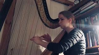 'My Father's Favourite' from Sense and Sensibility (1995) on Harp