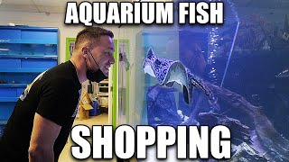 Let's shop for aquarium fish!!