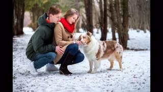 История любви. Фотограф Мария Ягова, собака - Коттон Вингс Анриал