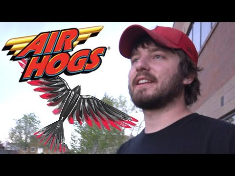 RC BIRD : Air Hogs FireWing | Toy Chest