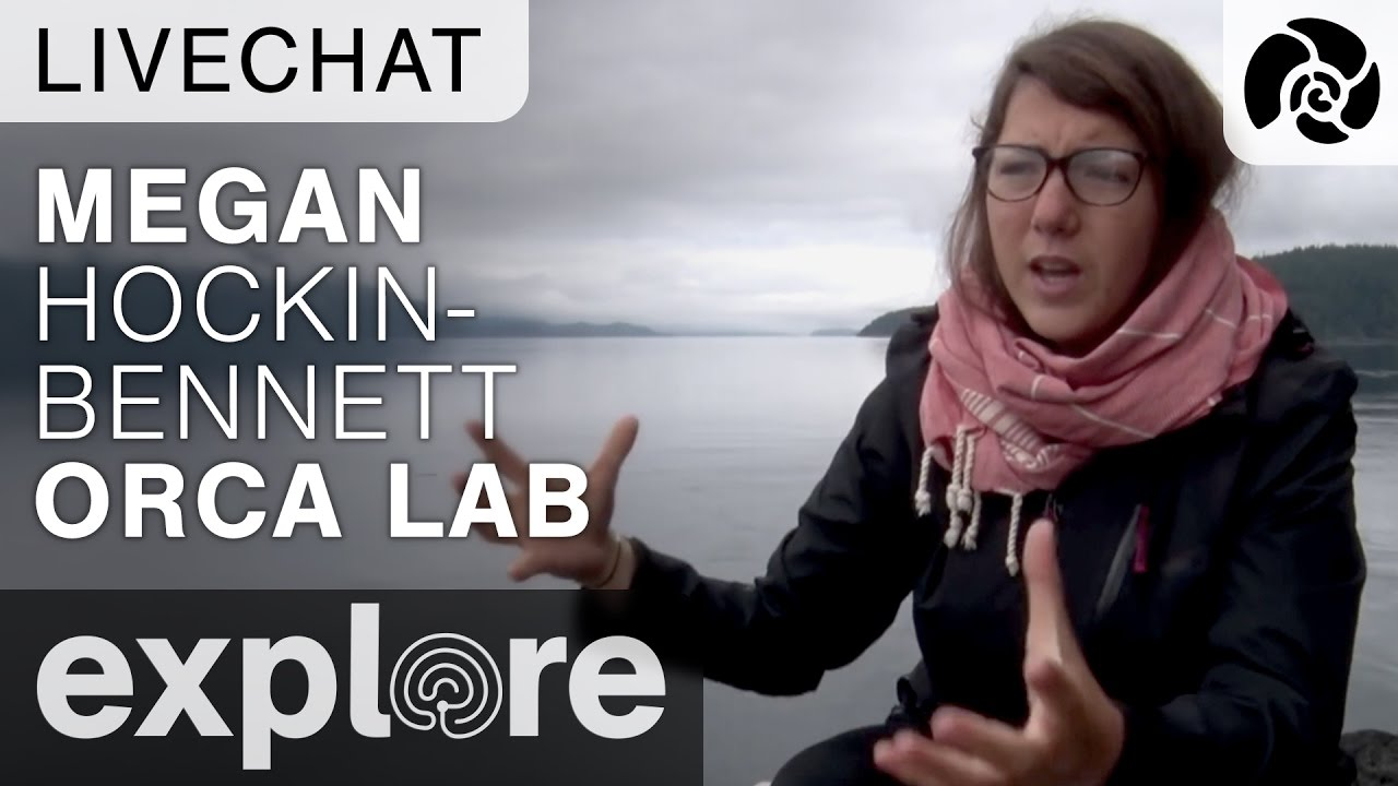 Megan Hockin-Bennett from Orca Lab - Live Chat