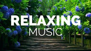 행복 빈도 | 세로토닌, 도파민 및 엔돌핀 릴리스 음악, 이명 (Binaural Beats) 진정 음악