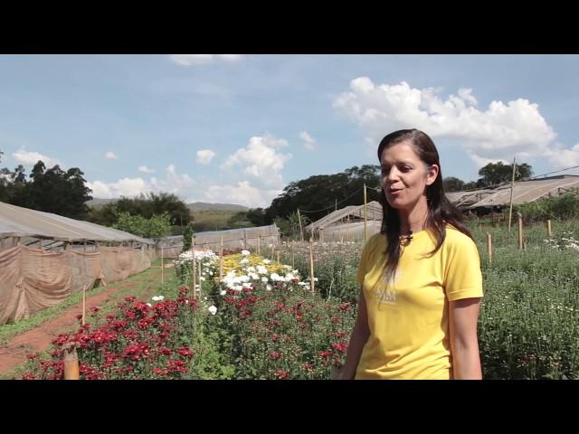 Floricultura EPAMIG