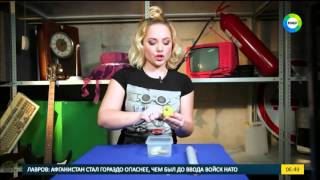видео Как избавиться от мошек в квартире в домашних условиях?