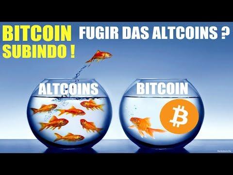 🚨 Bitcoin $ 8 mil e subindo! Fugir das Altcoins?