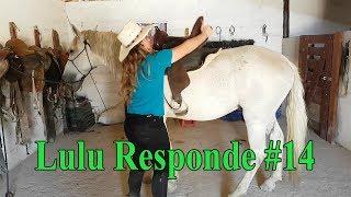 Lulu Responde #14