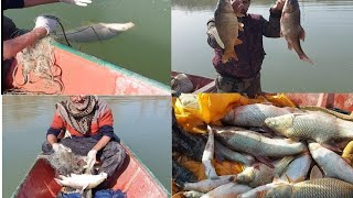 شاهد اجمل لقطات صيد سمك 🐟🐟 في الانهار😘🤩
