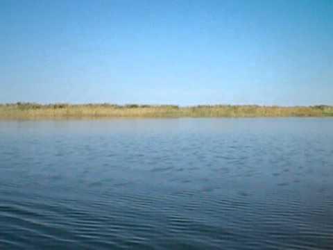 Воды озера Биликоль подтопили дома в Жамбылской области