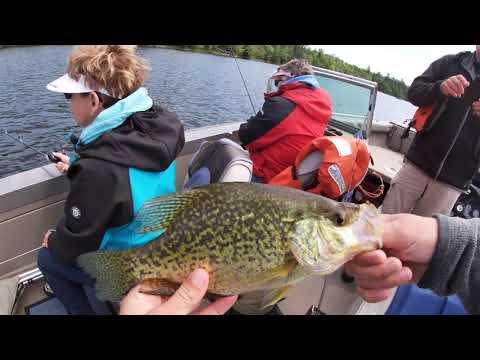 Wallye Fishing On Lake Kabetogama!