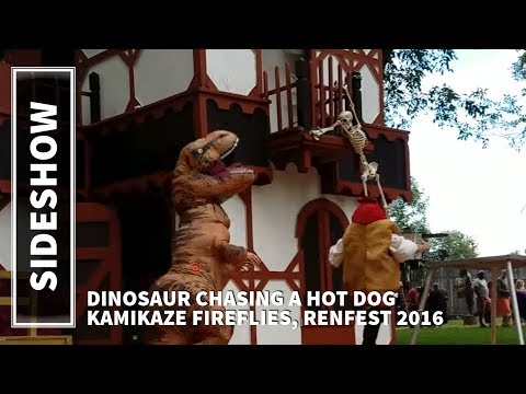 DINOSAUR CHASING HOT DOG   Kamikaze Fireflies   RENFESTIVAL 2016