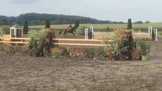 Equitation Derby