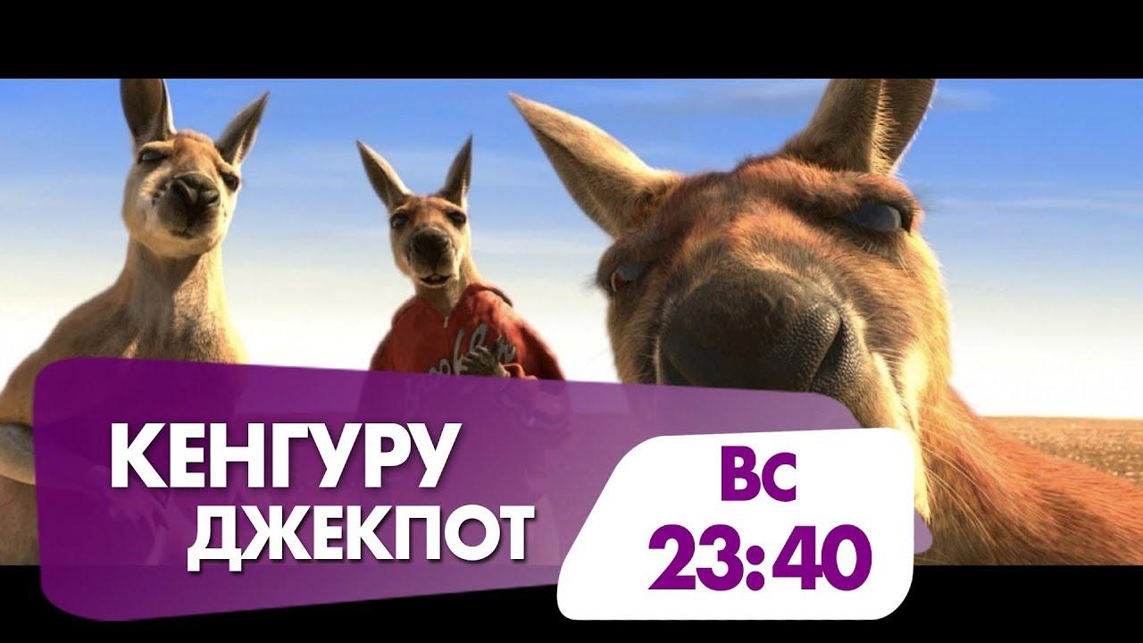 смотреть фильмы онлайн кенгуру джекпот 2