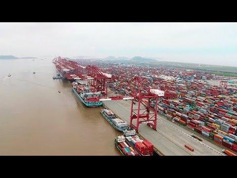يانغشان.. الميناء العملاق  - نشر قبل 14 دقيقة