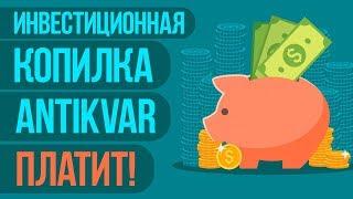 ANTIKVAR.CASH - САЙТ КОПИЛКА ДЛЯ ПАССИВНОГО ЗАРАБОТКА ОТ 10$ В ДЕНЬ