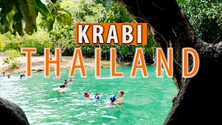 KRABI In A Day, 3 Amazing Sites! Emerald Pool, Hot Springs, And Tiger Temple.